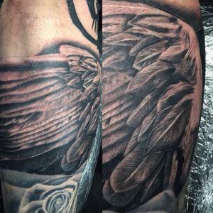 #wings #wingtattoo #silverbackinkinstablack