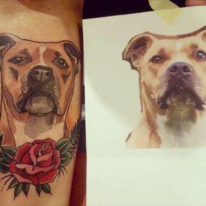 #dogs #dog #pitbull #amstaff #love #onelove #italian #girl #me #italy  #tattoo #tatuaggio #ink #beauty #girl  #inkedgirl   #tattedup #pinup #tattoolife #bodymod #inkedapp #piercing #tattooedgirl #inked #happiness  #girlswithtattoos