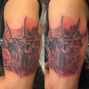 Little elk tattoo i did the other day #cricktattoos #workhorseironswest #dringenbergmachines