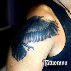 #tattoorana #alextakahashi #crowtattoo