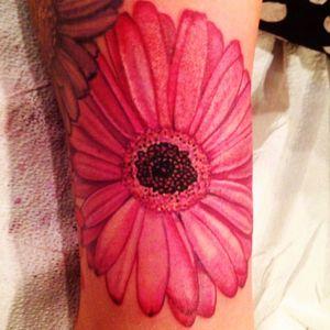 Artist #cindyvega #flower #gerberdaisies #pinkflower