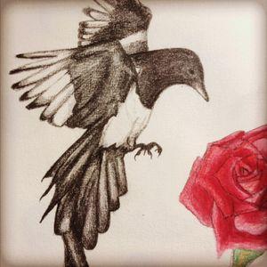 #magpie #gypsy #colour #design