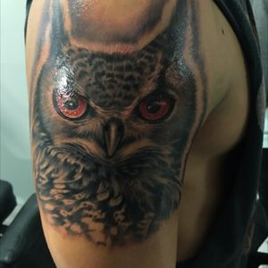 Owl portrait // #Owl #Portrait #Blackandgrey #PuertoRico