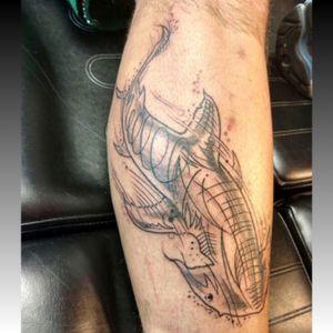 #shark #scetch #black #lines #calf #tattoosbygotti @tattoosbygotti #welove