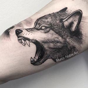 #dotworktattoo #dotwork #tattoo #tattooed #BlackworkTattoos #Black #blackworkers #tattooed @tattoodo #tattoodo #linework #ttism #marconobreart
