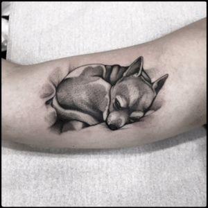 #black #sleeping #dog #tattoo #blackwork #totemica #ontheroad
