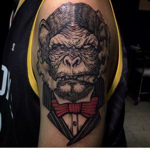 #Dokgoloco#ape #monkey #gangster