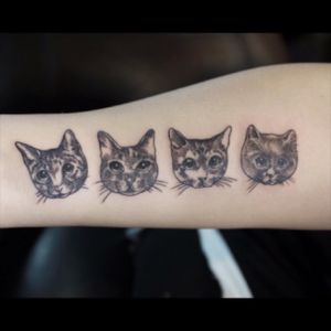 #dotworktattoo#cattattoo#catportraittattoo#kittytattoo#hongkongtattoo