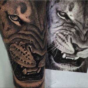 #lion #realism #realistic #animal