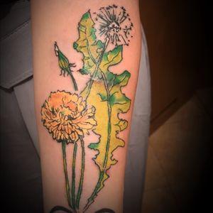 #dandelionflower