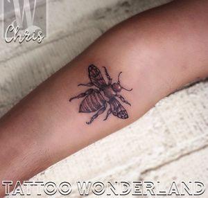 #sephiatattoo all brown and white #honeybee @danleytattoos @tattoowonderland #youbelongattattoowonderland #tattoowonderland #brooklyn #brooklyntattooshop #bensonhurst #midwood #gravesend #newyork #newyorkcity #nyc #tattooshop #tattoostudio #tattooparlor #tattooparlour #customtattoo #brooklyntattooartist #tattoo #tattoos #brownandwhitetattoo 🐝🐝🐝