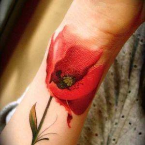 #watercolortattoo #poppy #poppytattoo