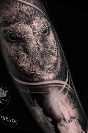 Black amd grey owl and candel #jamesbrennan