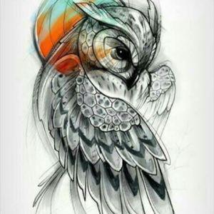 #owl #design