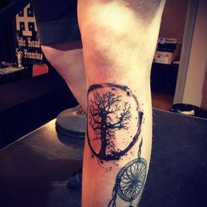 #treeoflife #dreamcatcheer