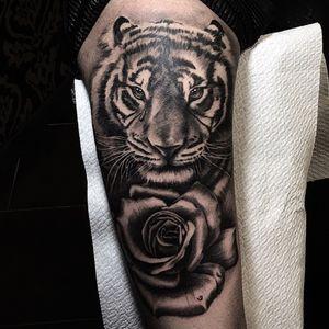 Instagram: @Raul.colomatattoo done in Rome/Italy #tigre #tiger #rose #rosa #ink #tattoo #tatuaje