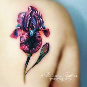 #botanicaltattoo #iris