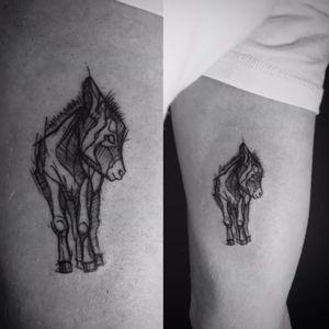 Baby donkey for Mati #tattoo #tattoos #donkey #babydonkey #donkeytattoo #blackwork #blackworkers #blackworkerssubmission #inked #inkedboy #ink #sketchstyle #sketchstyletattoo #poland #warsaw #polishtattoo #polishtattooartist