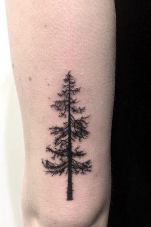 #tree #treetattoo #black #nature #akuma #yamatattoostudio #roma