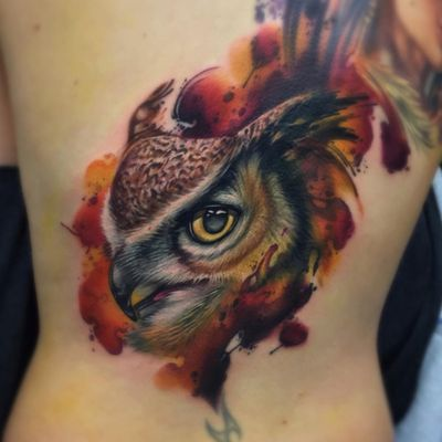 Fede Gas. #coruja #owl