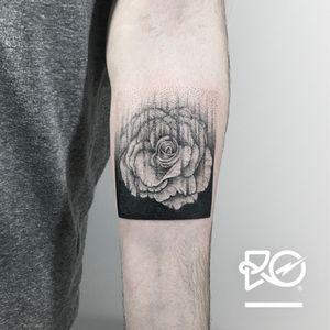 By RO. Robert Pavez • Fading Black Rose • #engraving #dotwork #etching #dot #linework #geometric #ro #blackwork #blackworktattoo #blackandgrey #black #tattoo #rose