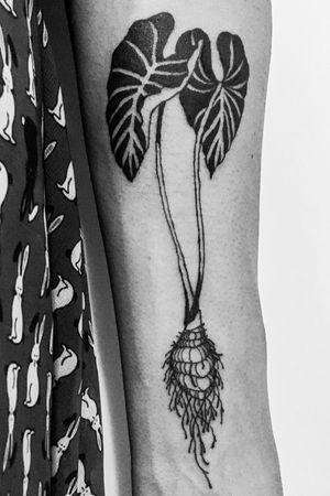 #agrotattoo #botanical #blackwork #blackink #tatuaje #tattoart #contemporaryart #artwork #artcollector #marcelserranotattoo #freeflow ✖️🖤✖️