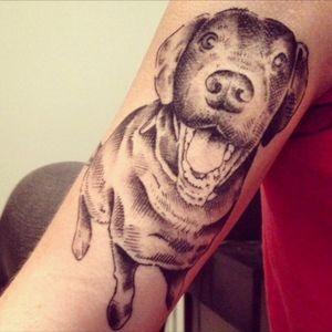 #blackandgrey #dogportrait #sketchstyletattoo #metamorphosis