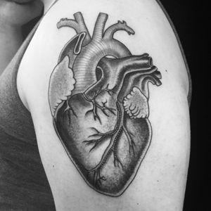 #heart #anatomicalheart #blackwork #tattoosbyrodrigocanteras #lovehatenewyork