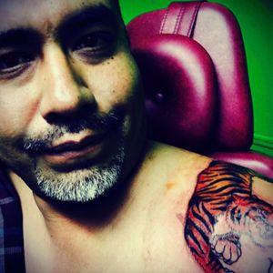 #tiger #puebla #mexico