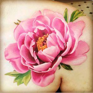 #michellemaddison #peony #pinkpeony #flower