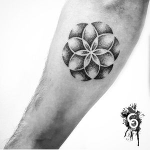 Done by Cam Oliver in Wellington, NZ. #dots #dotwork #dotshading