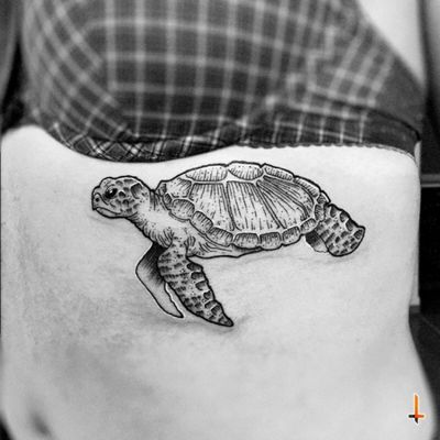 Nº223 Tatturtle (the first one of this year) #tattoo #ink #turtle #turtletattoo #reptile #shell #ectotherms #marine #biology #marinebiologist #ocean #animal #2017 #bylazlodasilva