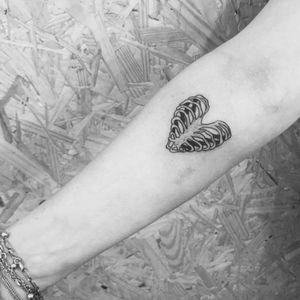 Costelas! #fineline #finelinetattoo #fineartist #FineLineTattoos #finelined #fineart #traçofino #tattoodetraçofino