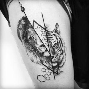 #samsara #lion #tiger