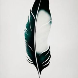 Magpie feather #magpie