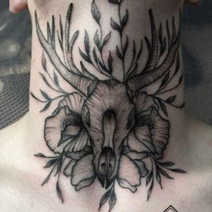 #tattoodo#tattrx #equilattera #tattooarmada #TAOT #cheyennetattooequipment #deertattoo #inkstinctsubmission #inkstinctofficial #poppiestattoo#blackworkers #blacktattoo #inkedgirls #tattoofilter #rosestattoo #ezcartridge #occultarcana