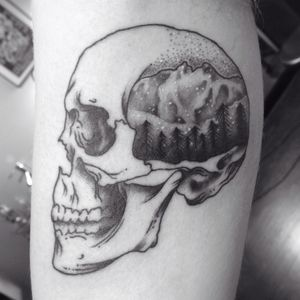Canadian mountains and skull