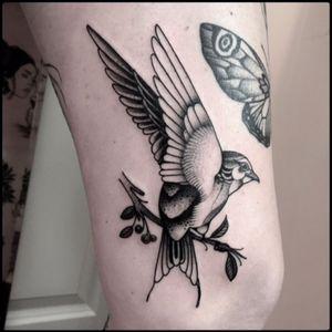 #black #bird #branch #tattoo #blackwork #totemica #ontheroad