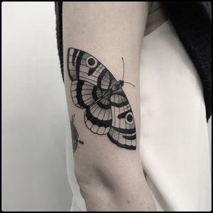 #totemica #tunguska #black #moth #butterfly #insect #entomology #tattoo #blackworkers #holdfasttattoostudio