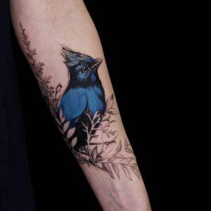 #DianaSeverinenko #bluebird #flowers