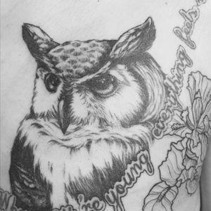 Owl done by AX #owl #tattoo #blackandgrey #Shanghai