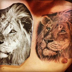 #tattoo #tattooartistforhire #blackandgraytattoo #skulltattoo #portraittattoo @tattoosofinstagram #skinandink #inkmaster #timflanagan @fusion_ink @fusionink @fusiontattoo #fusionink #darkzerotattoo #TattooistArtMagizine #highcontrast #trump #berniesanders #donaldtrump #feelthebern #jasonburrisisgay #danbilzerian #fkirons #customtattoo #specktrarotary #spektrarotary #rpgclick #dayofthedead #dayofthedeadtattoo #dayofthedeadgirl #dayofthedeadgirltattoo