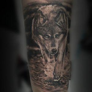 #wolf #tattoos #Tattoodo #inked #inklovers #animal #wolf #tattoolover #turkey #alanya