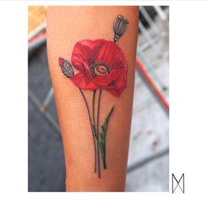 🌺🌷🌹🌸🌼 #EnyaMahuta #ny #brooklyn #poppy #flower #redfllower