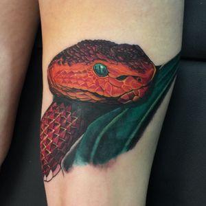 Snake tattoo by caleb lynch #snake #snaketattoo #snakehead #naturetattoo #nature #serpent #redsnake #deadlybeautiful