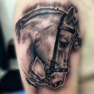 #thebestspaintattooartists #blackandgreytattoo #sombras #caballo #inkmaster
