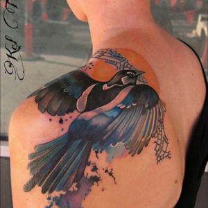 #shoulder #upperback #bird #watercolor #KelTait #keltaittattoo @kel.tait.tattoo #welove