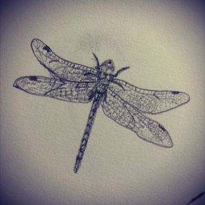 #design #tattoodesign #dragonfly #bugs