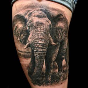 Tattoo by PeeWee Sinerco. #peewee #peeweesinerco #sinerco #elephant #elephanttattoo #realistictattoo #animaltattoo #bng #bngtattoo #blackandgraytattoo #blackandgreytattoo #tattoo #tattoos #tat #tats #tatts #tatted #tattedup #tattoist #tattooed #tattoooftheday #inked #inkedup #ink #tattoooftheday #amazingink #bodyart #tattooig #tattoosofinstagram #instatats  #larktattoo