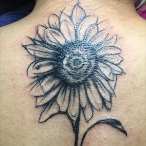 unfinished #sunflowertattoo